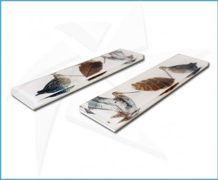 Cristallium® Scales - Woodcock feather